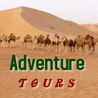 Dubai adventure Tours and safaris