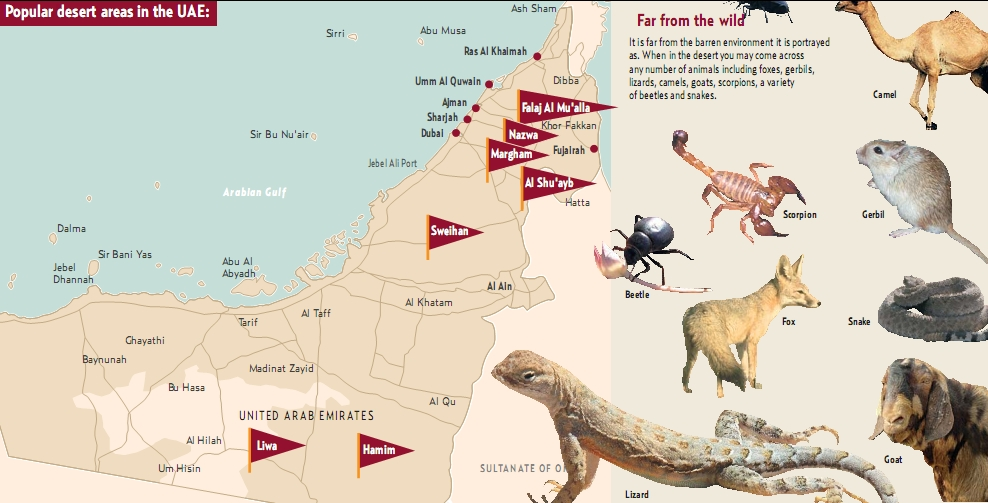 DUBAI DESERT MAP